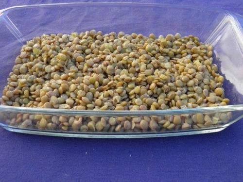 Arrange lentils in a single layer