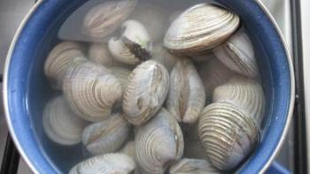 In another saucepan boil the clams in salted water