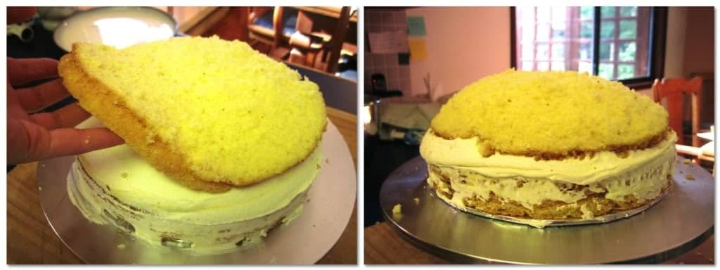 Place the final layer of sponge cake on top