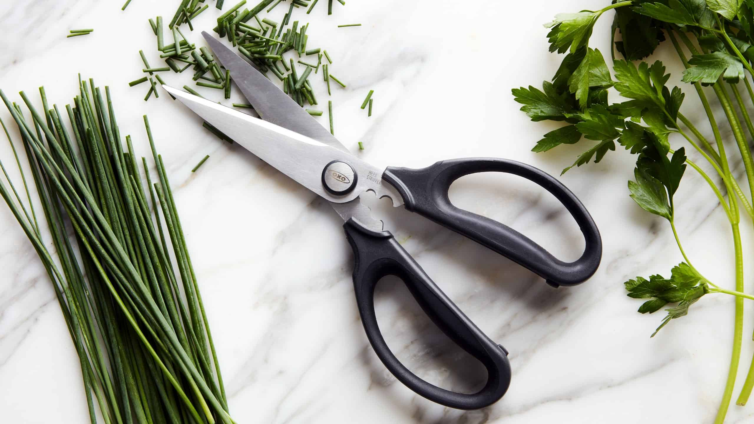 Best Kitchen Shears on the Market
