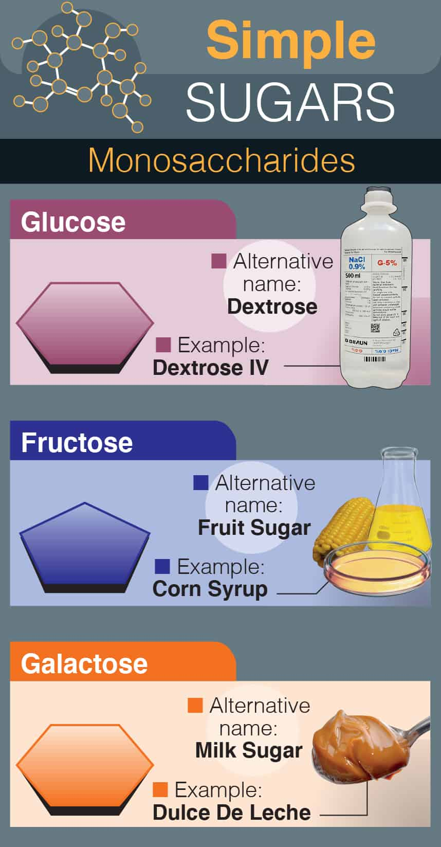 Simple Sugars: Monosaccharides