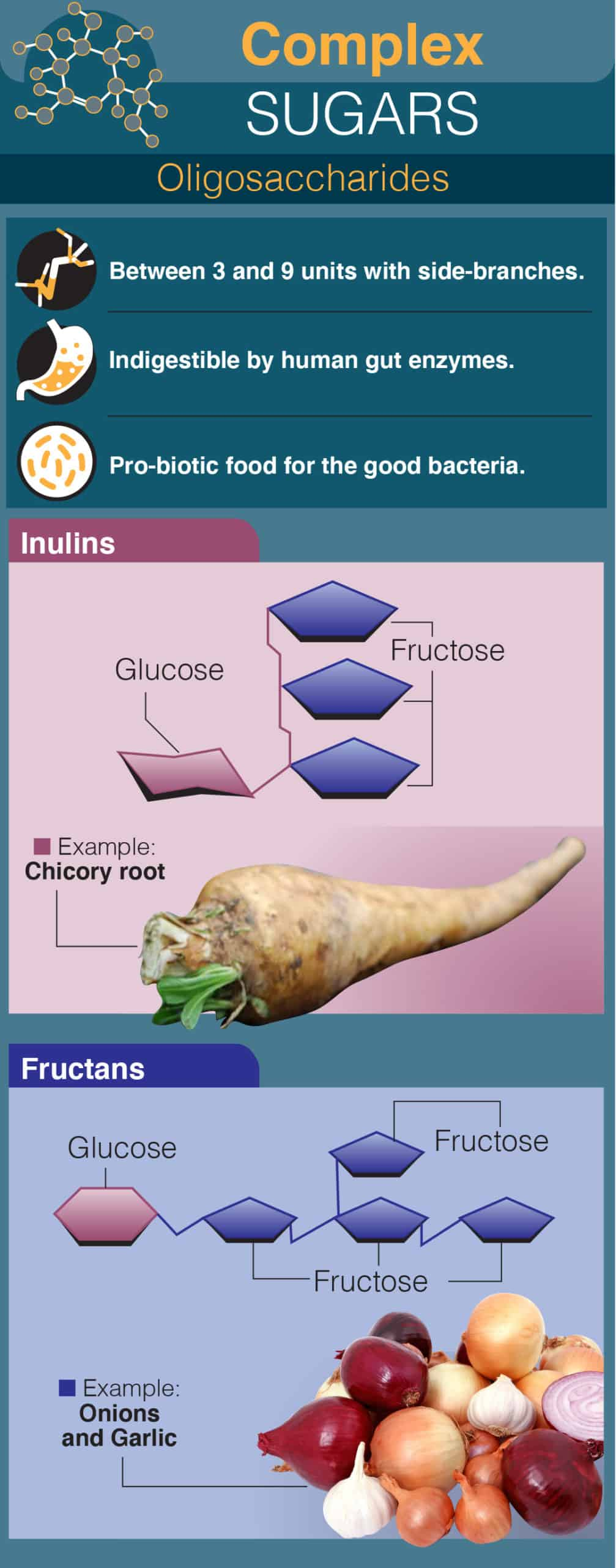 Complex Sugars: Oligosaccharides