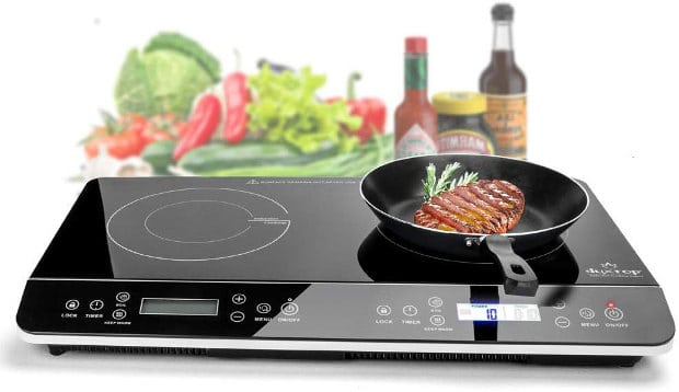 Best Portable Induction Cooktop Of 2020