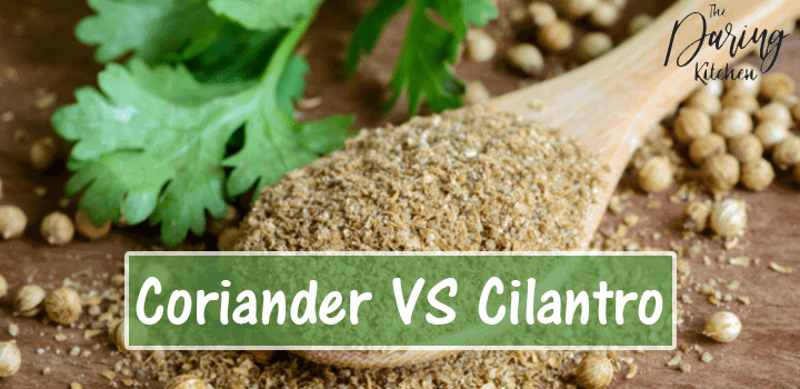 Corainder vs Cilantro