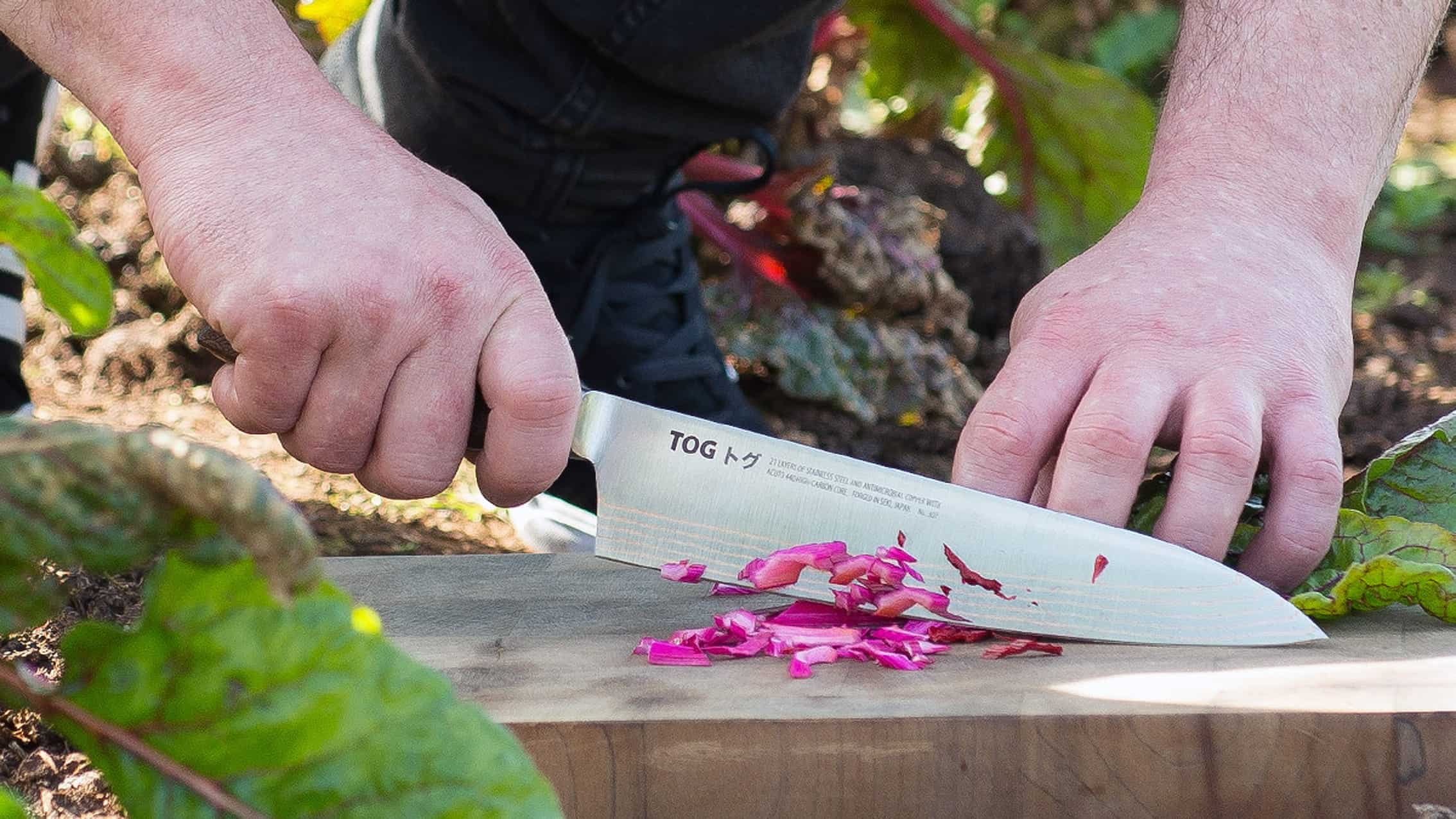 Holding Chef Knife by the Handle