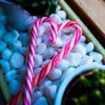 Are Candy Canes Vegan