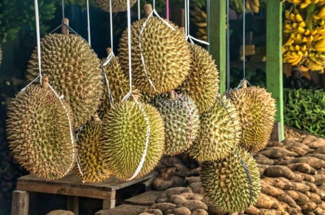 Durian hanging in a market stall