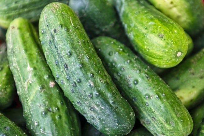 Pile of cucumbers