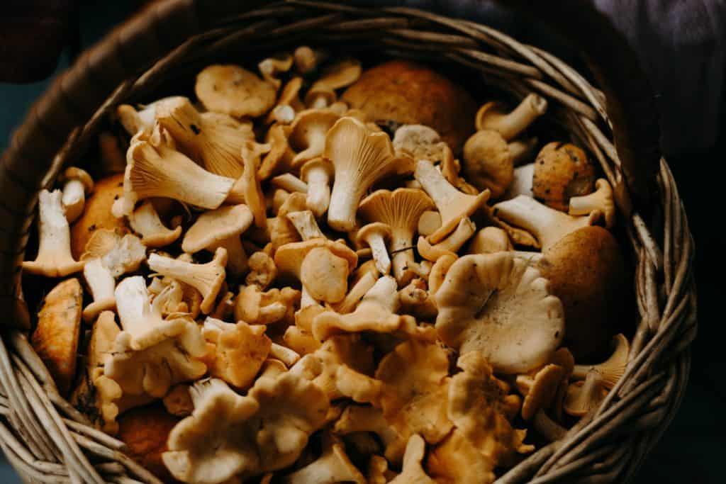 Mushrooms in a basket ready to roast and freeze