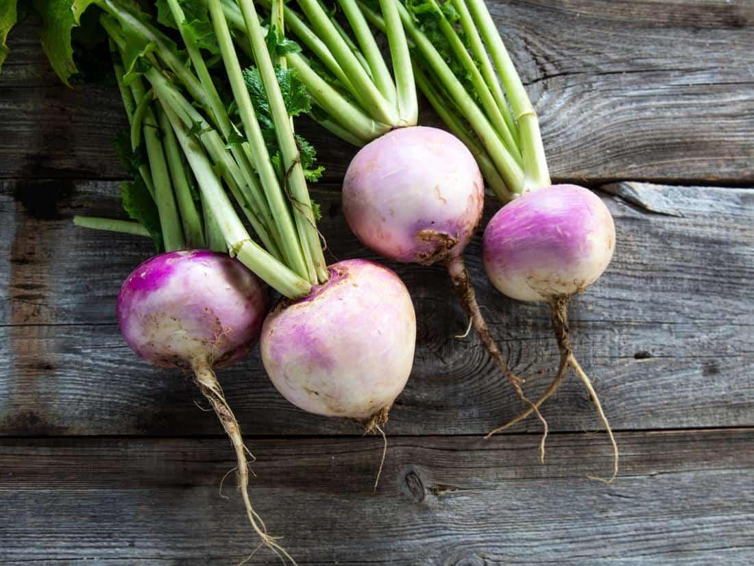 Bunch of turnips